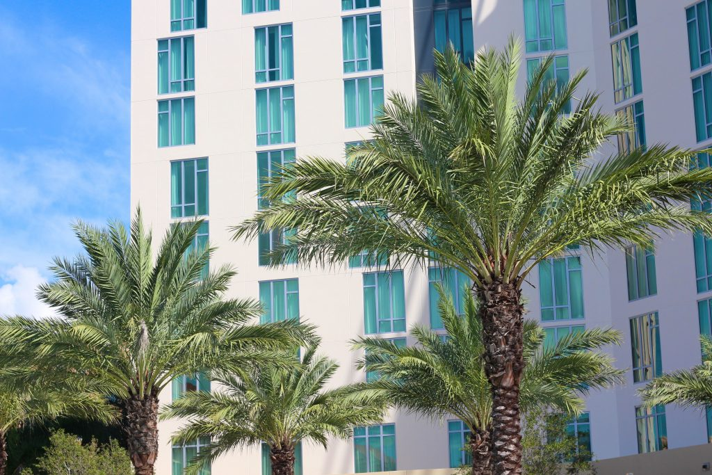 Discover The Palm Beaches - West Palm Beach - Travel - Travel Diaries - Staycation - BisousBrittany - Bisous,Brittany - Hilton WPB